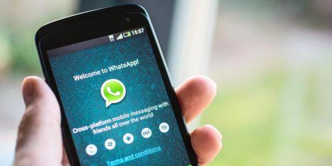Cara Menghemat Memori Smartphone dari Foto WhatsApp yang Menumpuk